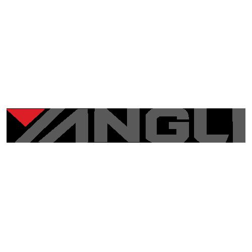 YANGLI GROUP CORPORATION LTD